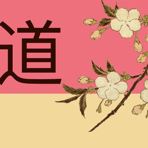 Кибер-самурайство